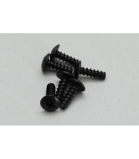 River Hobby Round Head Tapping Screw 4x13(6Pcs)
