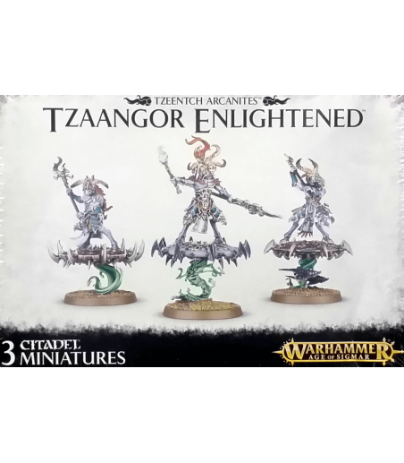 Warhammer TZEENTCH ARCANITES TZAANGOR ENLIGHTENED