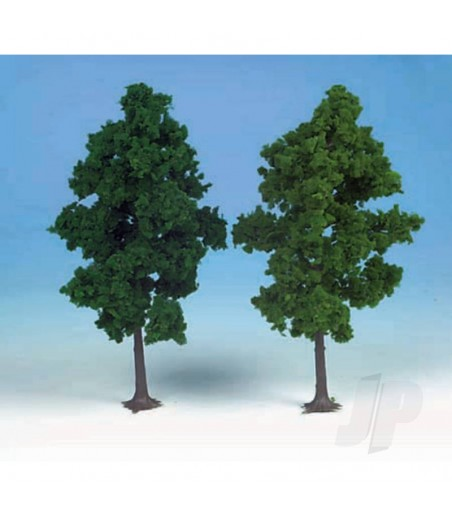1202 2 Beech Trees 19cm (Dark Green)