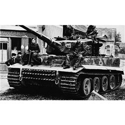 FORCES TIGER I AUSFE LATE USSR 44
