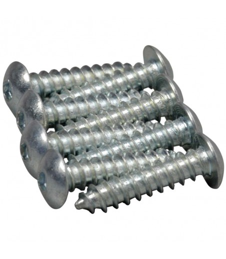 "GPLANES 4 x 1/2"" Button Head Sheet Metal Screws (8) T-GPMQ3124"